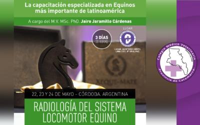 Radiología del Sistema Locomotor Equino