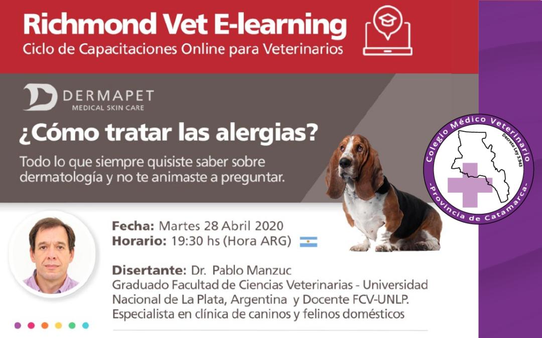 ¿Cómo tratar las alergias en felinos y caninos?