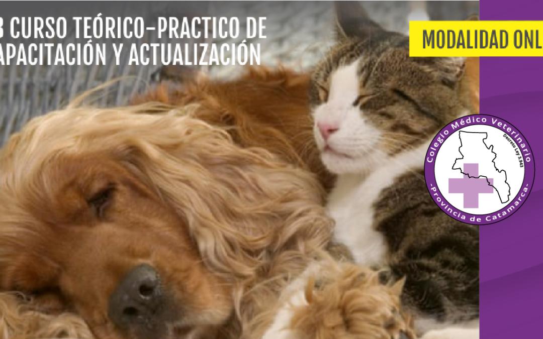 13er Curso sobre Dermatología Veterinaria en la Clínica Diaria 2020 – Modalidad ONLINE